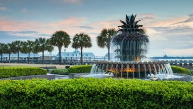 Photo of Reasons what makes Charleston, SC a great place to visit