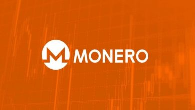 Photo of Monero price in 2021, where to find the latest insughts and predictions