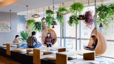 Photo of Importance of plants near work spaces