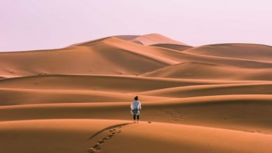 Photo of The 17 Crazy Things You Have To Do in Morocco Before You Turn 30