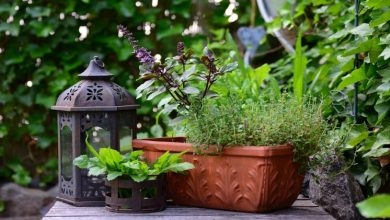 Photo of Top 3 Home and Garden Trends for 2021