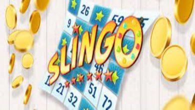 Photo of What is Slingo?