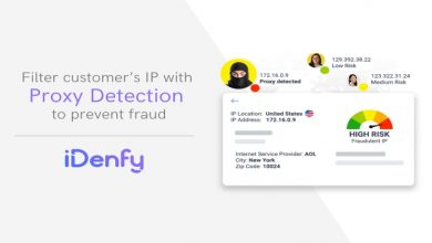 Photo of Lithuanian Tech Startup iDenfy Announces Launches Proxy Detection