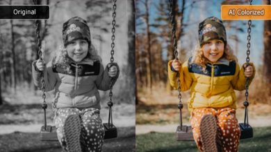 Photo of How to Colorize a Black and White photo with Vance AI Photo Colorizer