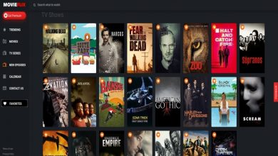 Photo of Moviesflix uri website – Is it Safe to Download Movies from This Website?