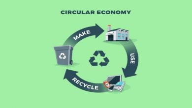 Photo of What is the Role of a Co-Packer in a Circular Economy?
