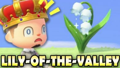 Photo of ACNH Lily Of The Valleys Guide – All You Need To Know About Lily Of The Valleys In Animal Crossing