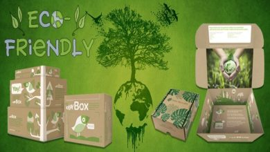 Photo of 5 Backings for Why Interest for Eco-Friendly And Packaging Is Rising