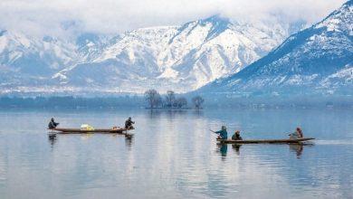 Photo of Tourism in Srinagar